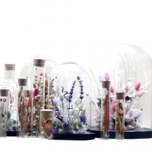 Atelier Cloches Fleurs Séchées avec Adelaide Avril