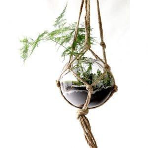 Suspension Corde Carice avec plante Ø25