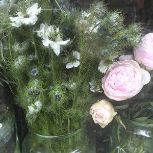 Fleurs / Bouquets