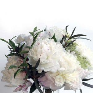 Bouquet de Pivoine Shirley Temple