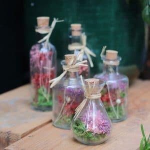 Bouteilles en verre fleurs séchées Ø5 H 10 cm