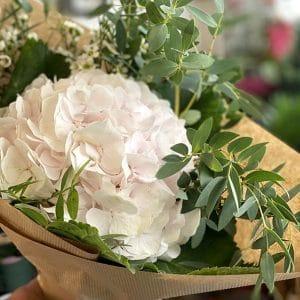 Bouquet de Hortensia, Wax et Eucalyptus