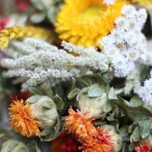 Shanna Bouquet de fleurs séchées