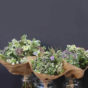 Bouquet Hortensia, Fresia…