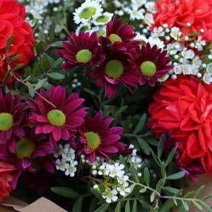 Bouquet Dahlia Corail