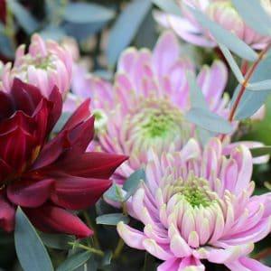 Bouquet Dalhia Pourpre de Barbizon